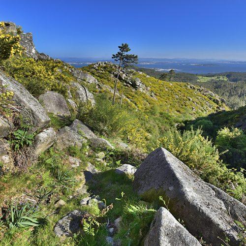 Polos dominios da Loba Branca: mámoas, petróglifos e castelos na Serra do Barbanza