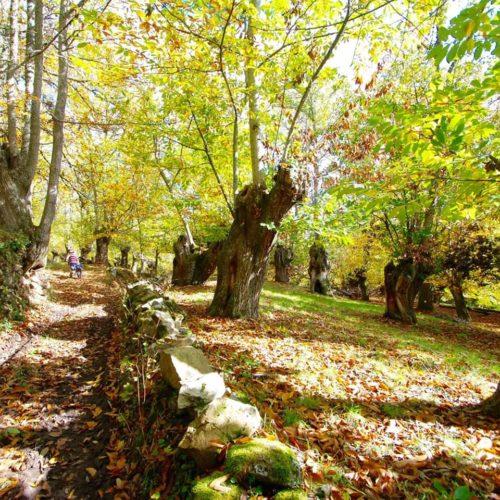 Camiñando entre mitos na comarca de Trives