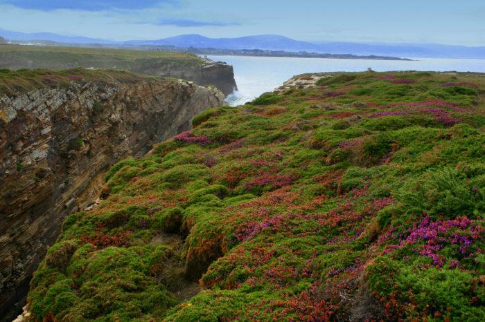 Os castros que lindan con Irlanda…mar por medio